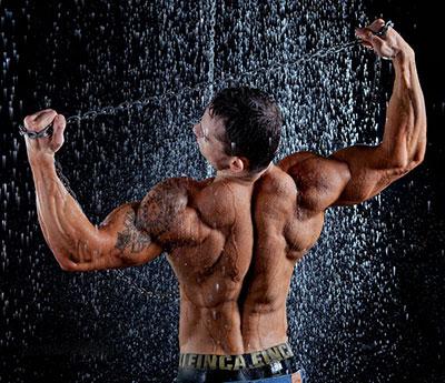 Рельеф мышц