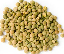 Чечевица белковый продукт
