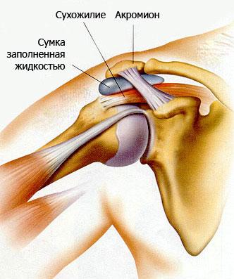Боль в плечевом суставе тренировка замена коленного сустава по квоте в санкт-петербурге