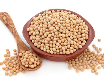 Соя содержит белок растительного происхождения
