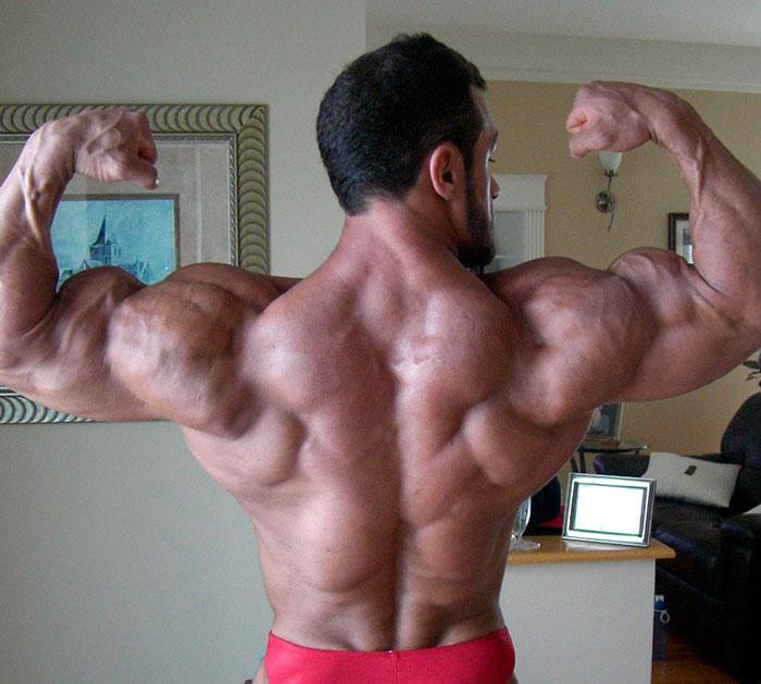 Натренированная трапециевидная мышца