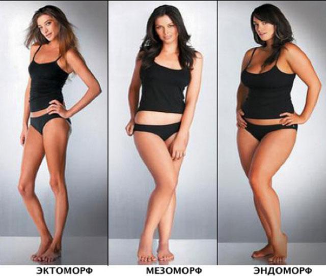 Женские типы телосложения