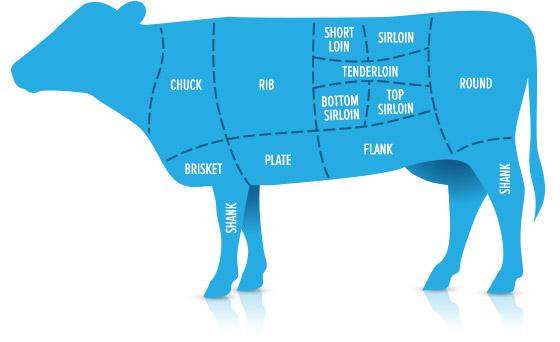 Схема говядины