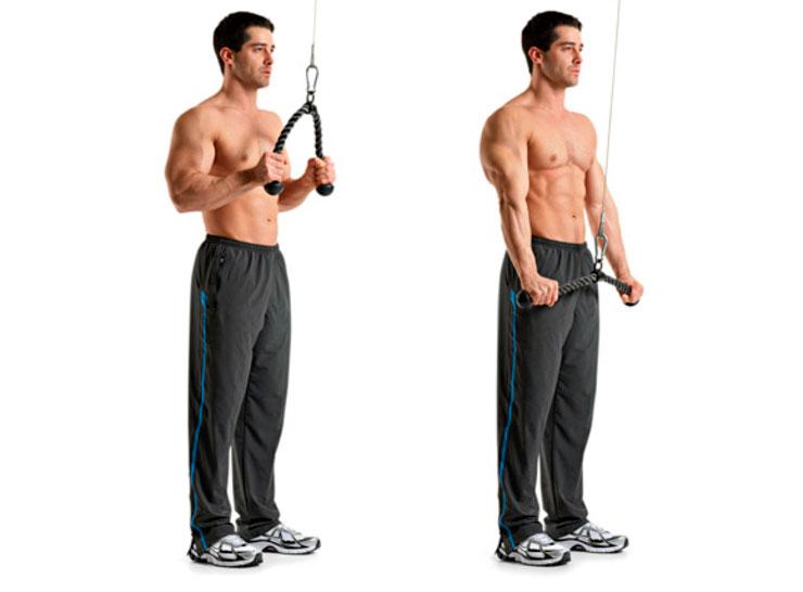 uprazhnenie-na-triceps-v-bloke