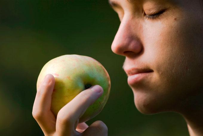 Нюхает яблоко, чтобы снизить чувство голода