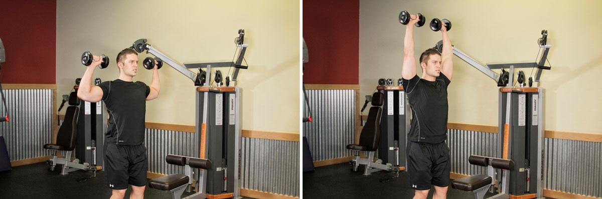 Картинки упражнений в тренажерном зале для девушек