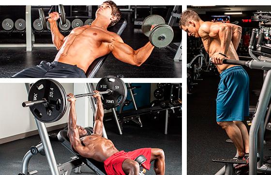 Самые эффективные упражнения для развития грудных мышц