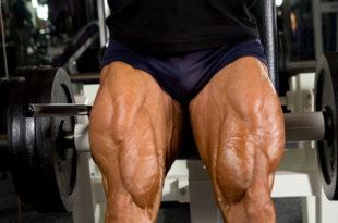 Тренировка ног на массу