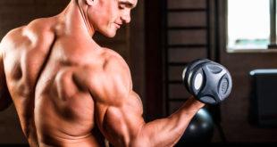 Упражнения для мышц рук